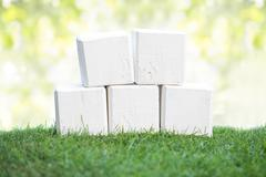 Stock Photo of Wooden blocks on a green grass