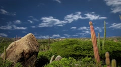 Aruba Desert with Clouds Timelapse - stock footage