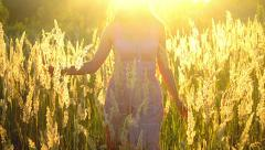 The girl slowly walks across the field on a sunny day Stock Footage