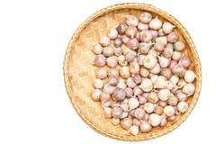 Single clove garlic isolated on white - stock photo