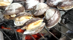 Stock Video Footage of Cockle seashells cooking on grill