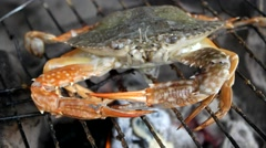 Cooking seafood barbecue Stock Footage