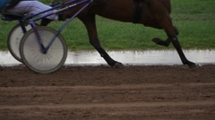 Trotting Horses In The Home Stretch Stock Footage