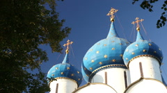 The Cathedral of the Suzdal Kremlin Stock Footage