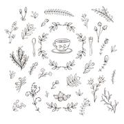 Set of branches, flowers, leaves and bushes. Doodle Stock Illustration