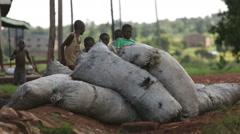 Young African boys in a Ugandan slum hiding behind coal sacks Stock Footage