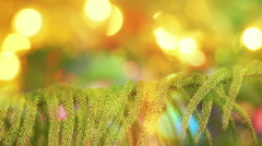 Branch of fir tree and defocused christmas lights Stock Footage