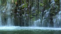 Water trickling down mossy rocks Stock Footage
