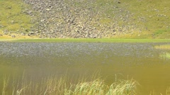 Closeup view of mountain lake in late August Stock Footage