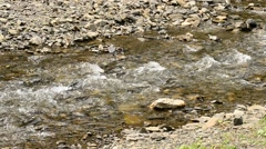 Mountain brook or river flowing along stone covered river bank Stock Footage