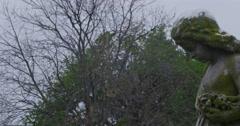 Angel Statue looking downward. Stock Footage