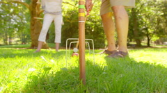 Croquet Ball Hitting the Final Post - stock footage