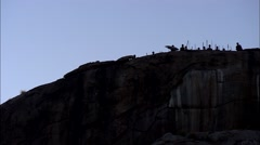 Maasai villagers in silhouette on mountain top - stock footage