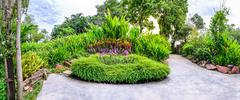 Stock Photo of Panoramic view of flora garden with cement pathway.