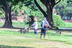 Team worker mowing lawn in garden. Stock Photos
