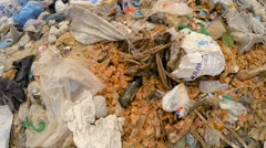 Huge Heap Of Domestic Garbage With Bones At Landfill In Ukraine Stock Footage