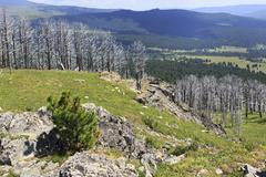 View Altai Mountains from the top of Tiyahty - stock photo