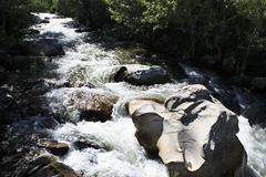 Stock Photo of Stormy mountain river Big Ilgumen in Altai Republic