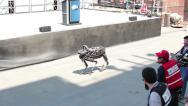 Stock Video Footage of Boston Dynamics Spot Robot