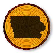 Iowa Map On Timber - stock illustration