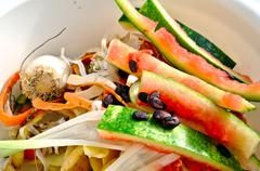 Vegetable scraps in a white plastic bowl bio waste, carrots, cesium, watermel Stock Photos