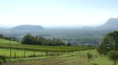 vineyard landscape in France - stock footage