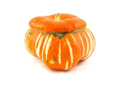 The ornamental pumpkins do not eat - stock photo