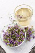 Fresh thyme tea - stock photo