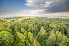 Forest with road sunset aerial dramatic sky Kuvituskuvat