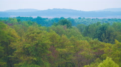 The picturesque forest, view with hill by mountain background Stock Footage