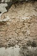 Vertical view of Colonial stucco wall in Asia with deep fissures, erosion, an Stock Photos