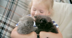 Happy with My Kittens Stock Footage