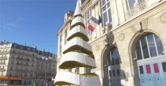 Big French Christmas Tree Stock Footage