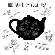 Hot tea flavors, tea herbs and spices Stock Illustration