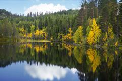 Beautiful scandinavian lake in autumn Stock Photos