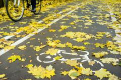 Cyclist in motion on road for bicycle in autumn with white symbol line and ye - stock photo