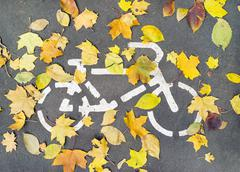 Road sign on asphalt for the ride cyclists and fallen autumn leaves - stock photo