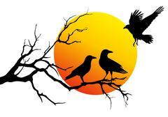 ravens sitting on tree branch, vector illustration - stock illustration