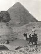 Camel ride at the Sphinx and Pyramids Kuvituskuvat