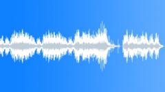 ALKAN preludes op. 31 no. 8 - stock music