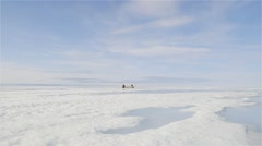 An expedition team traveling along sea ice in snowmobiles and qamutiks. - stock footage