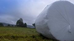 hay bale on harvested field, medium shot, autumn wind, timelapse - stock footage