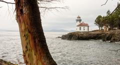 Stock Photo of Madrona Tree Lime Kiln Lighthouse San Juan Island Haro Strait