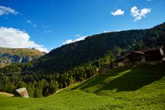Alpine meadow with houses - stock photo