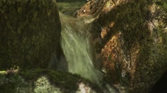 Small stream and waterfall in a British Columbian forest. (Tilt) - stock footage