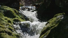 Stream flowing over some mossy rocks through Carp Ridge. - stock footage
