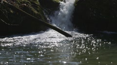 Base of a small water fall in Carp, Ontario. - stock footage