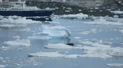 Zodiak boat filled with passengers maneuvering around icebergs in a Greenland Stock Footage