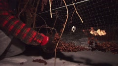 PIcking frozen grapes out of the netting below the grape vines. - stock footage