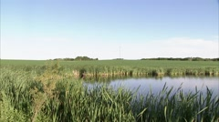 A large pond in Manitoba marshland. (Pan) Stock Footage